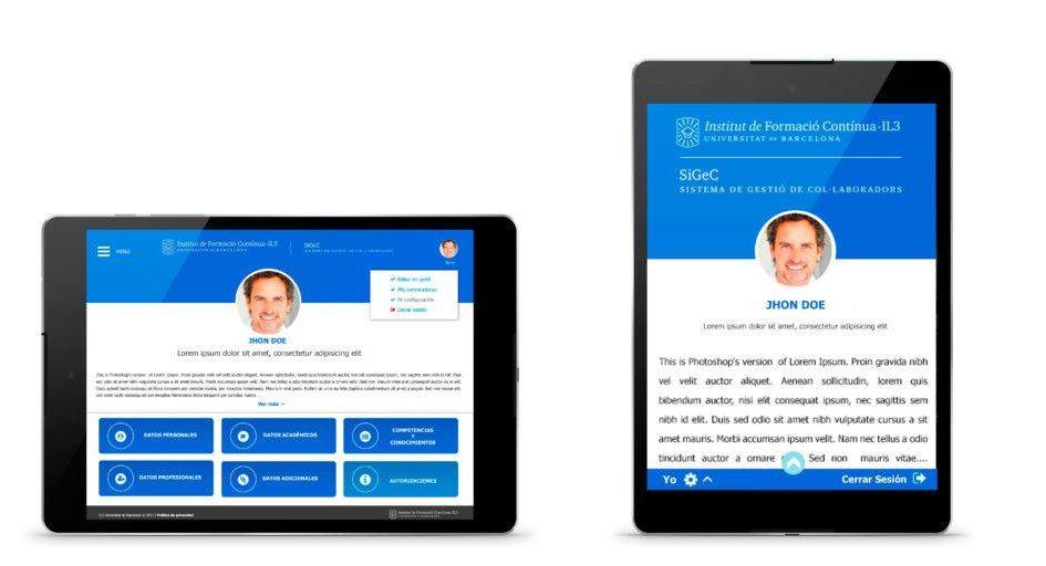 Diseño sitio web bcn